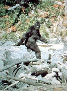 Fact or Fiction? Not so easy to answer any more (Patterson/Gimlin/Corbis)
