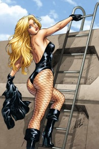 Black Canary in her trademark fishnets (DC Comics)