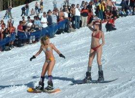 Snow boarding bunnies (Holy Taco)