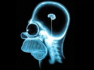 Even Homer Simpson uses his brain... and it's pea-sized! (Gracie Films)