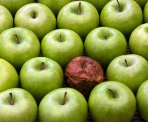 Don't let one bad apple spoil the whole bunch, people! (Chameleon Associates)